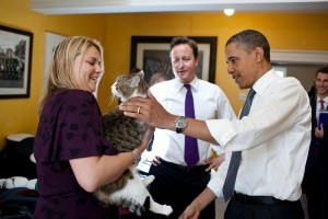 Famous-Felines-of-10-Downing-Street-300x200